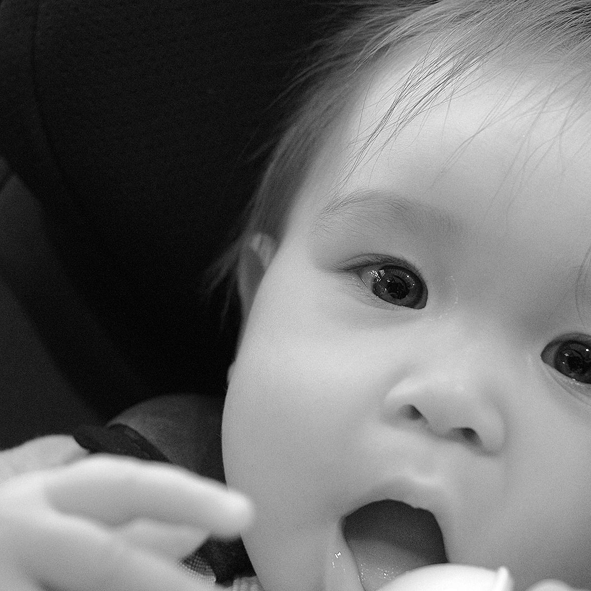 Baby Ellen, 2016